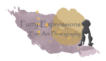 Furry Expressions Photography